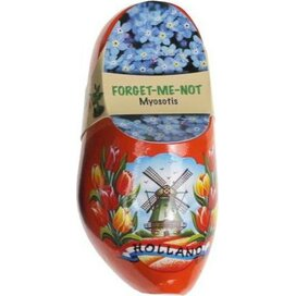 Flower Clogs Forget-Me-Not Tulp oranje